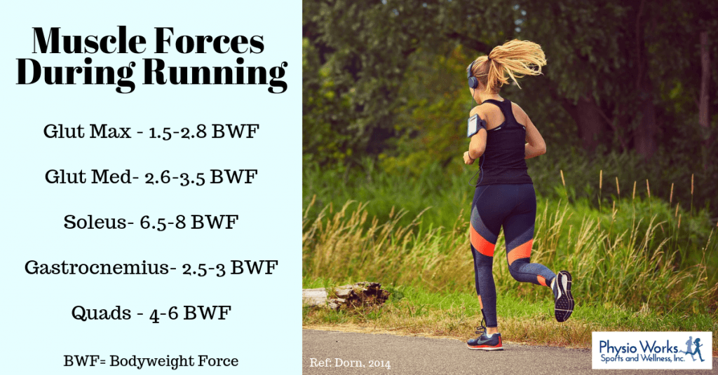 Typical forces experienced during running